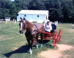 Mom with horse and buggy on PEI
