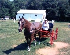 With a horse and buggy during a visit to Prince Edward Island.